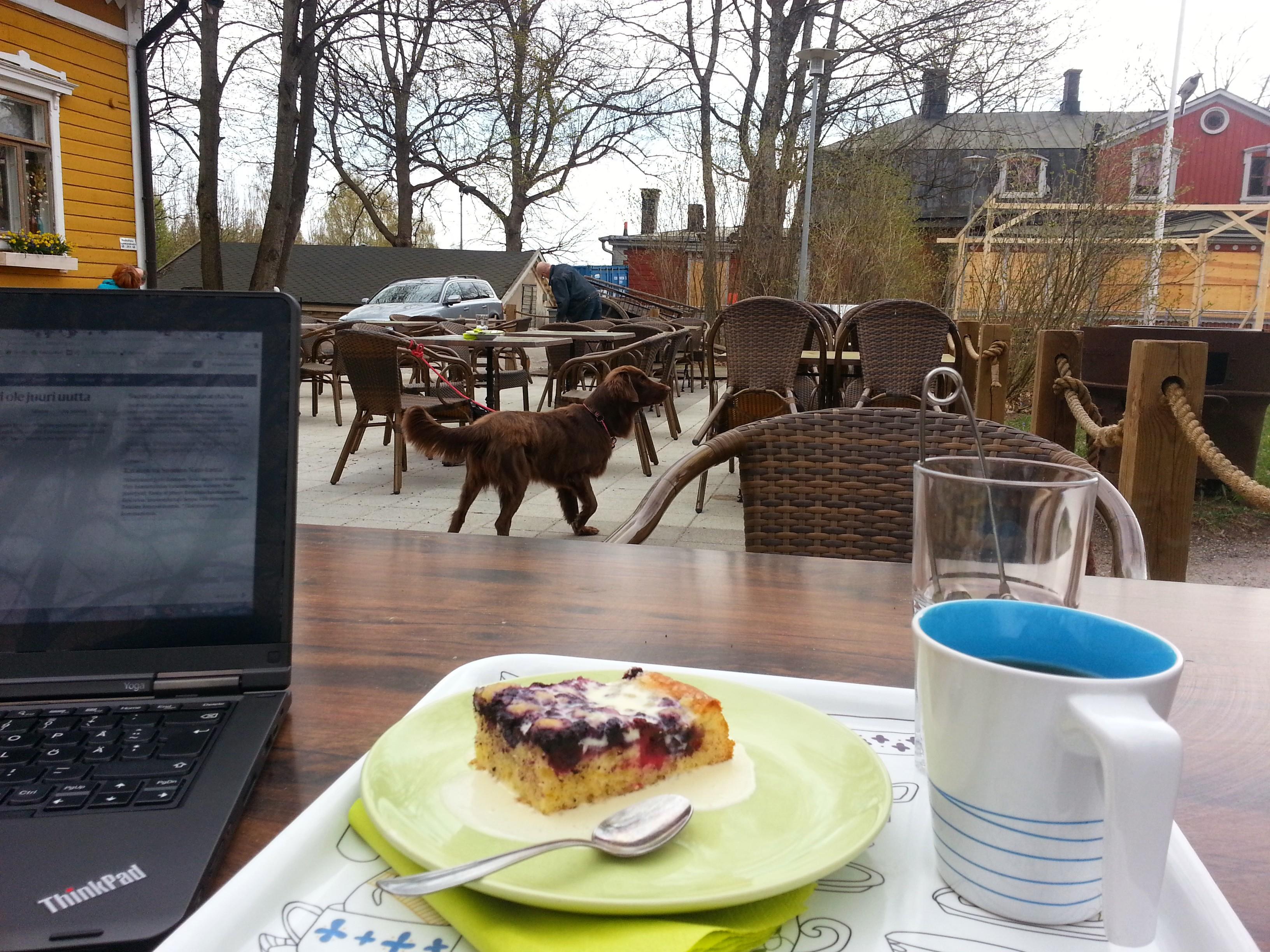 Café Svenkka, Helsinki: Myös koirat ovat tervetulleita terassille.