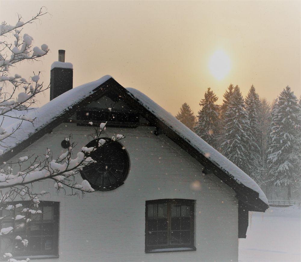 Kuninkaan Lohet, Vanha Viilatehdas, Vantaa