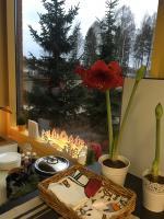 Good Day, Vantaa