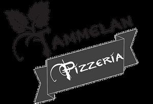 Tammelan Pizzeria, Tampere